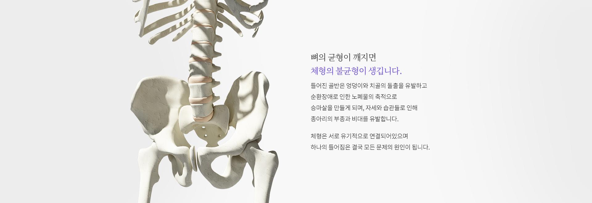 뼈의 균형이 깨지면 체형의 불균형이 생깁니다.